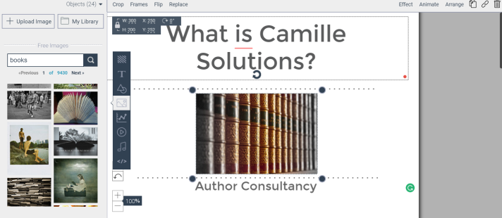 Camille Solutions text